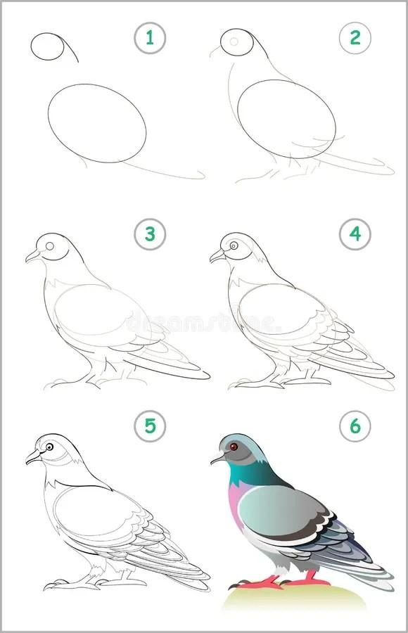Skills Stock Illustrations