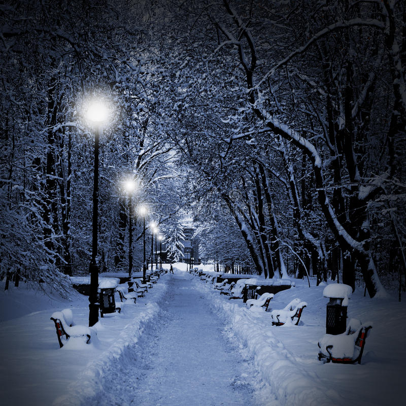 Falling Stars Live Wallpaper Park Covered With Snow At Night Stock Photo Image Of
