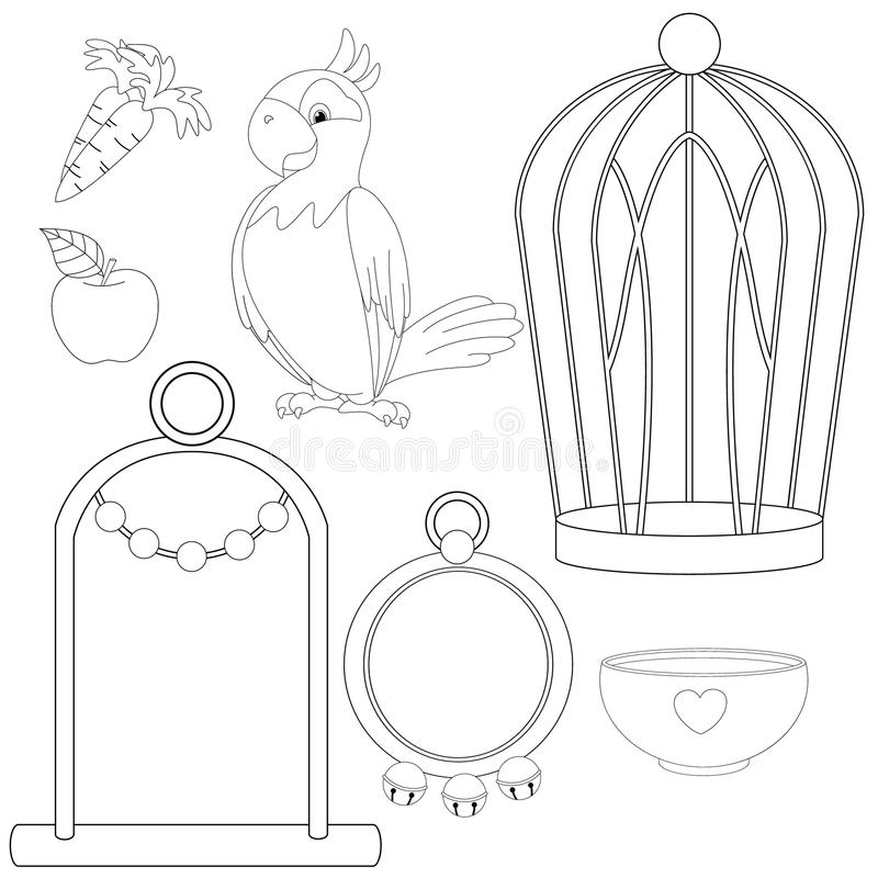 Parrot With Different Toys And Accessories Coloring Book