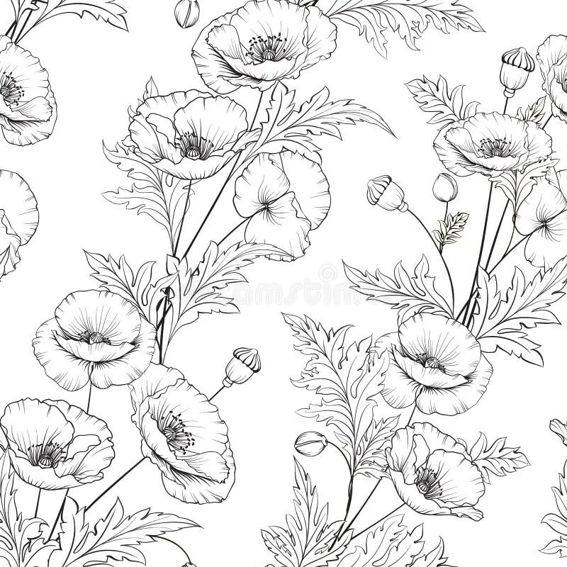 Pattern of poppy flowers. stock vector. Illustration of