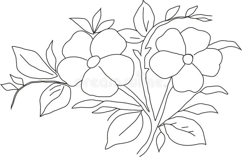 Pencil drawing violet stock illustration. Illustration of