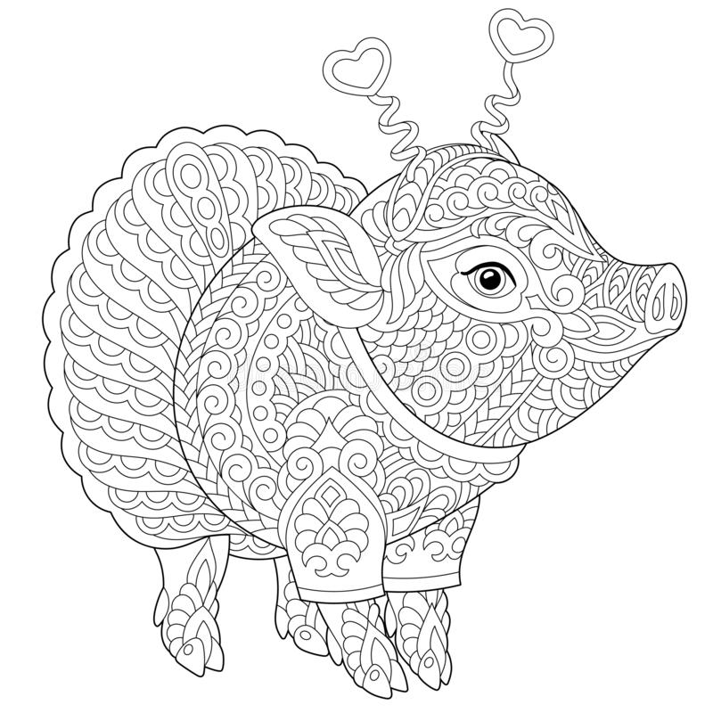 Zentangle Pig Piggy Coloring Page Stock Vector Illustration Of Background Antistress 135651176