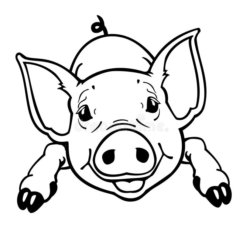 Piglet black and white stock vector. Illustration of