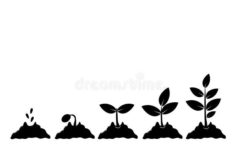 Grow Stock Illustrations