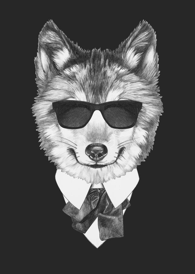 Cute Baby Bulldog Wallpaper Portrait Of Wolf In Suit Stock Illustration Illustration