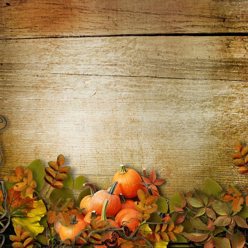 Fall Leaves Wallpaper Border Pumpkins And Autumn Leaves On The Wooden Background Stock