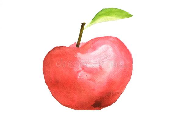 red apple fruit watercolor illustrator