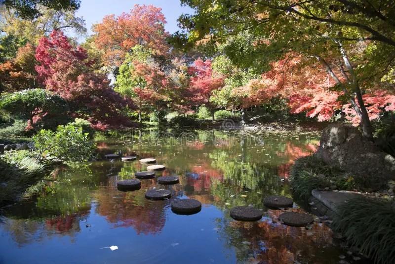 Scenic Fall Wallpaper Rock Path In Pretty Japanese Garden Stock Photo Image