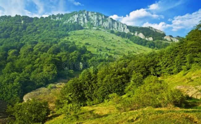 Scenic Hillside Landscape Stock Image Image Of Dokter Andalan
