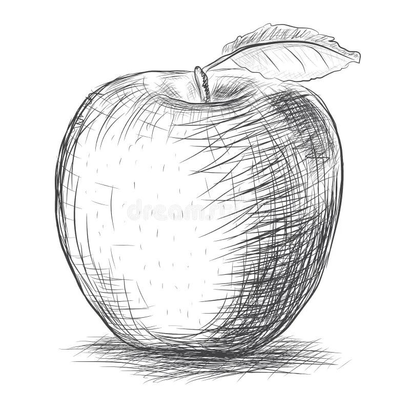 Schets appel vector illustratie. Illustratie bestaande uit