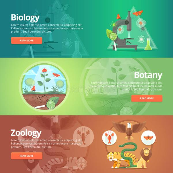 Science Of Biology. Natural Science. Vegetable Life