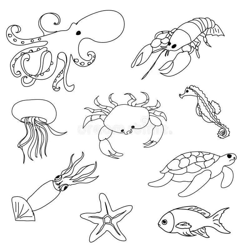 Sea animals coloring page stock illustration. Illustration