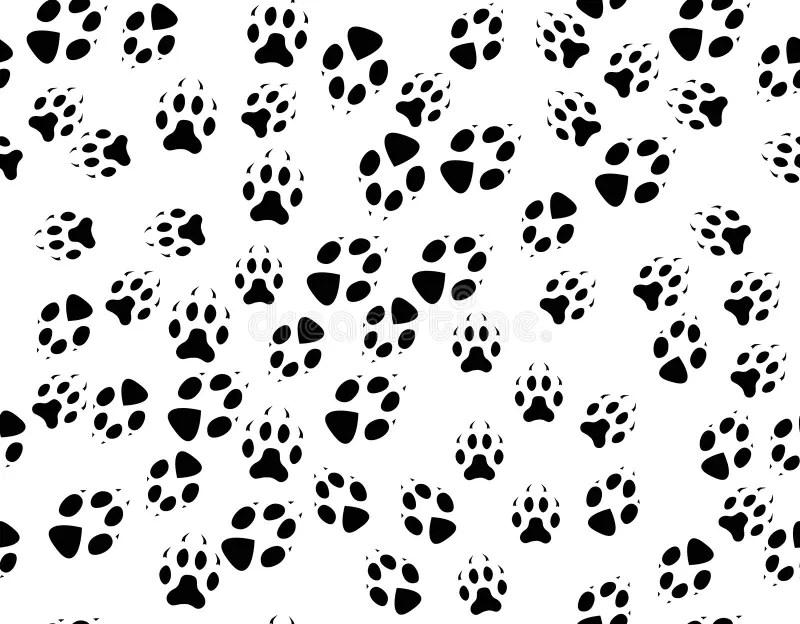 Animal Footpath Stock Illustration Image Of Foot Shape