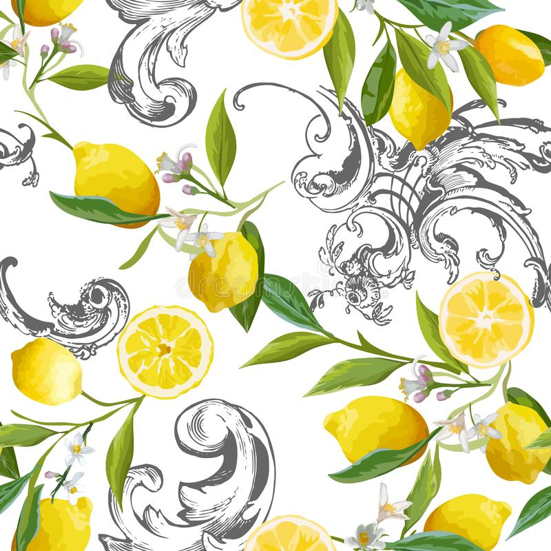 Foto di interni, design di cucine classiche, tende, mobili. Barocco Flowers Stock Illustrations 28 Barocco Flowers Stock Illustrations Vectors Clipart Dreamstime