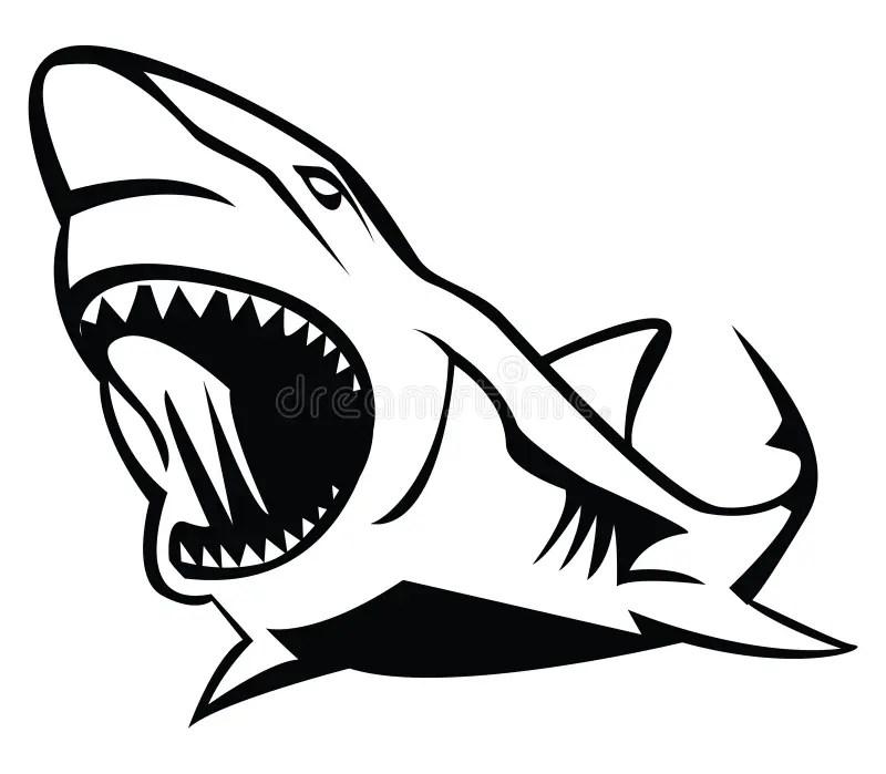 Shark stock vector. Illustration of face, death, ocean