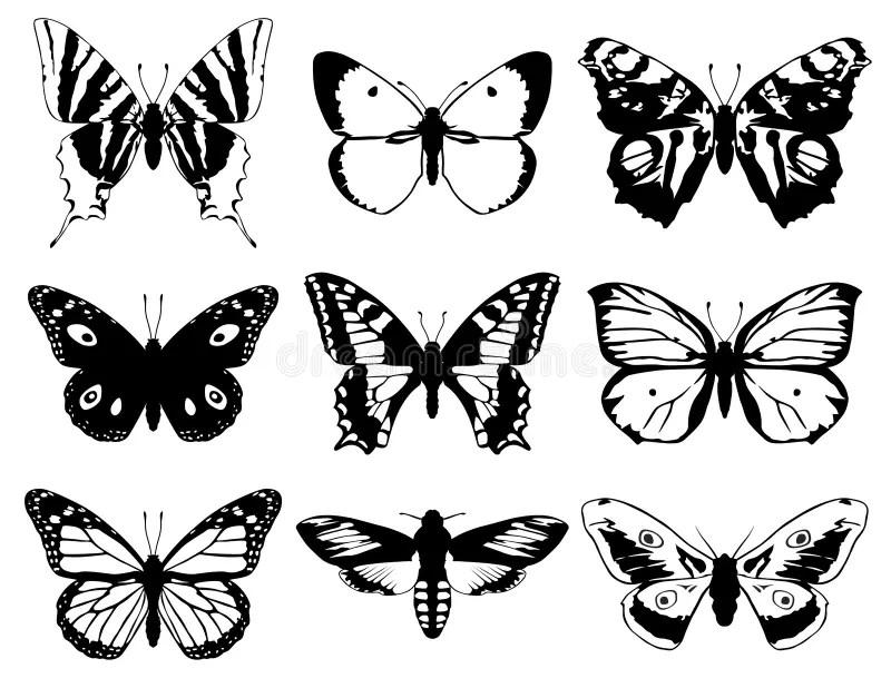 Sistema De La Silueta De Las Mariposas Ilustración del