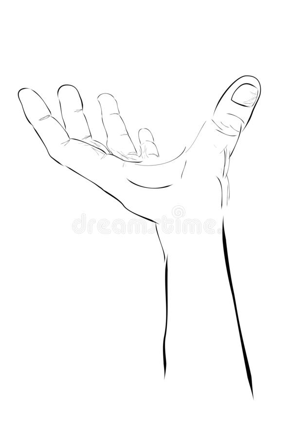 Hand Holding Something Sketch : holding, something, sketch, Sketch, Holding,, Picking, Receive, Something, Stock, Vector, Illustration, Loan,, Manager:, 127278933