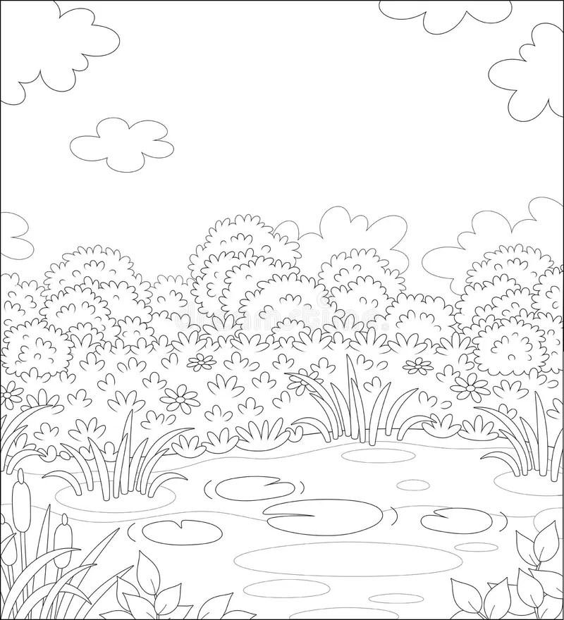 Lake Coloring Stock Illustrations