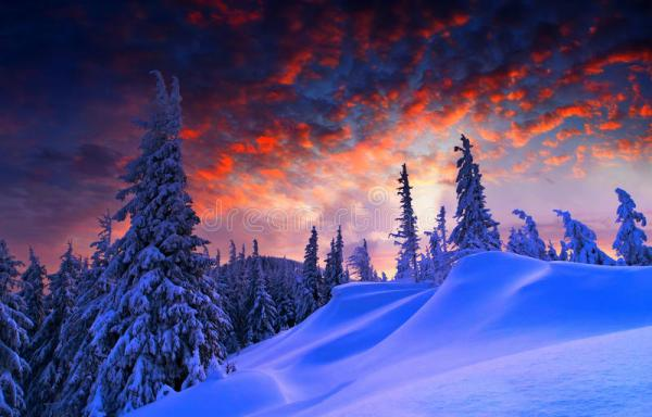 snowy landscape stock