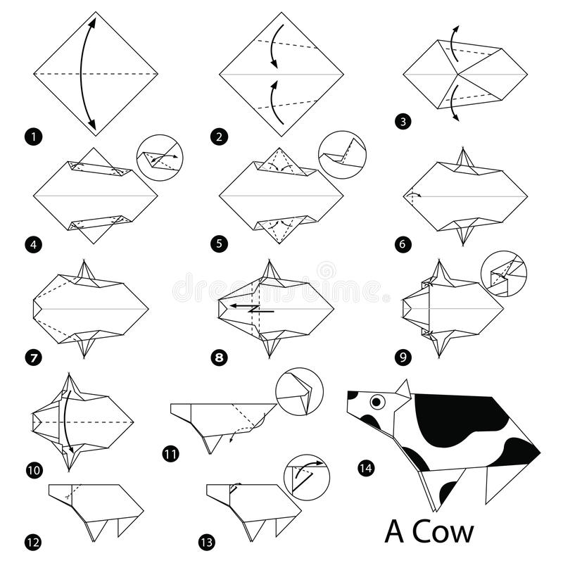 Step By Step Instructions How To Make Origami A Cow Stock