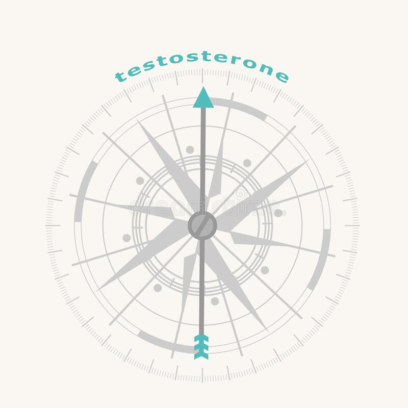 Hormone Testosterone Stock Illustrations