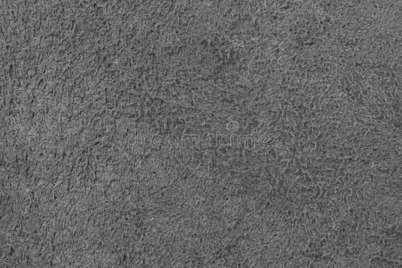 Textura De La Tela Alfombra Gris Inconstil O Moqueta