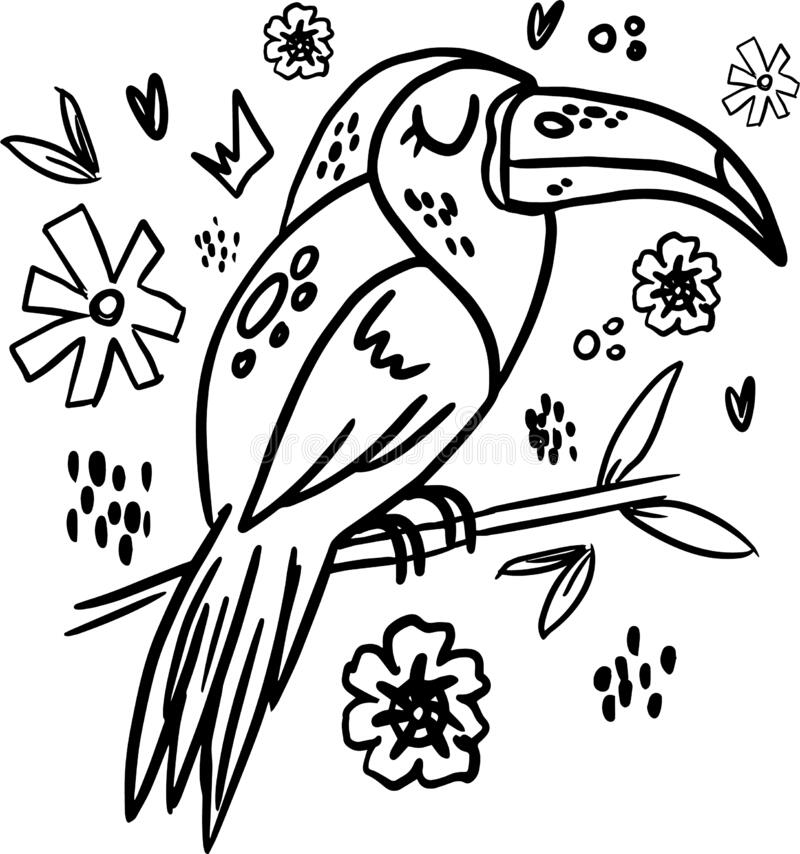 Coloring Book For Children, Parrot In The Rainforest Stock