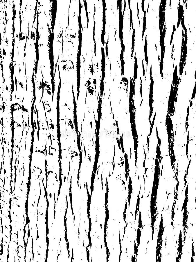 Bark Texture. Grunge Wooden Background. Distressed Vector
