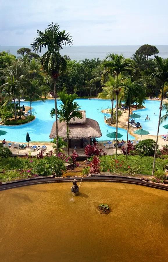 tropical island resort hotel pool