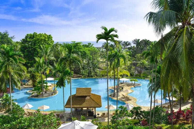 Download Tropisch Zwembad Stock Foto Afbeelding