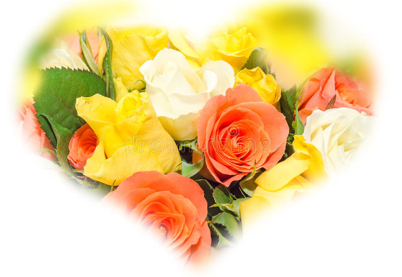 Yellow Roses Valentines Day 2014
