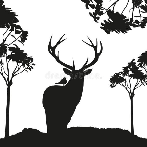 Vecrot Black Deer In Woods Stencil Stock Vector - 50906274