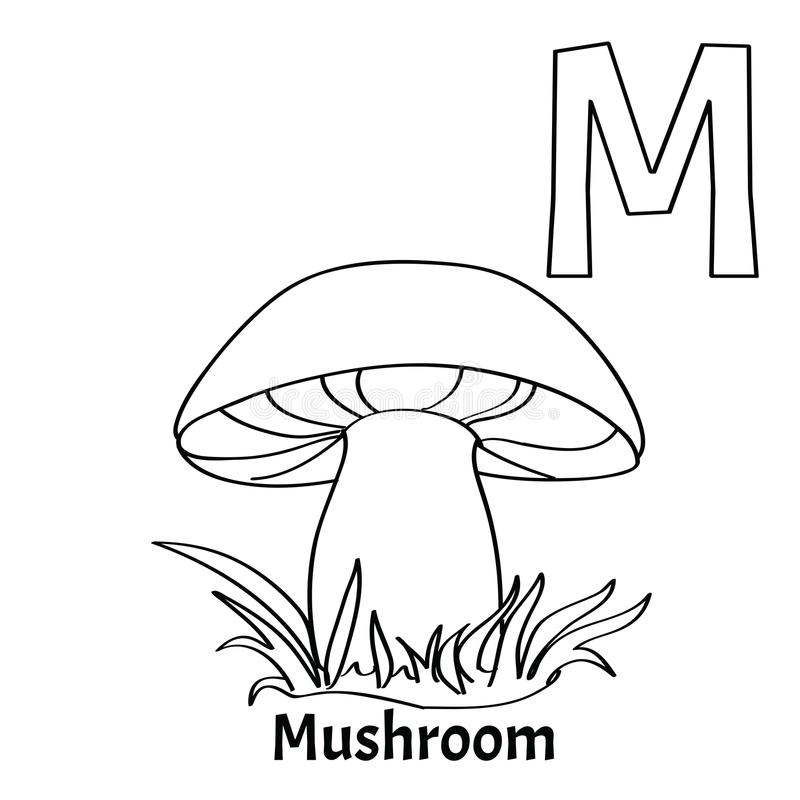 Vector Alphabet Letter M Coloring Page Mushroom Stock