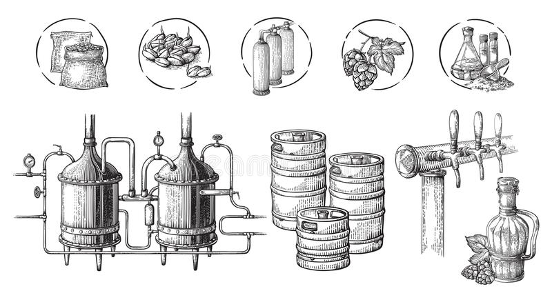 Vector Beer Infographics With Illustrations Of Brewery