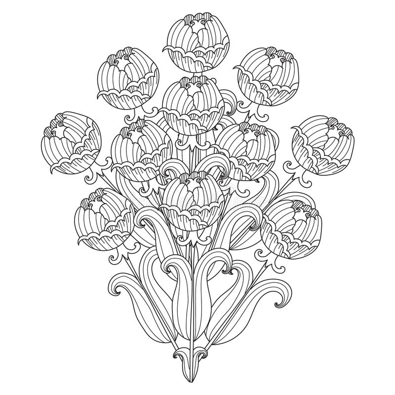 Poppy Flower Vector Drawing Set. Isolated Wild Plant And