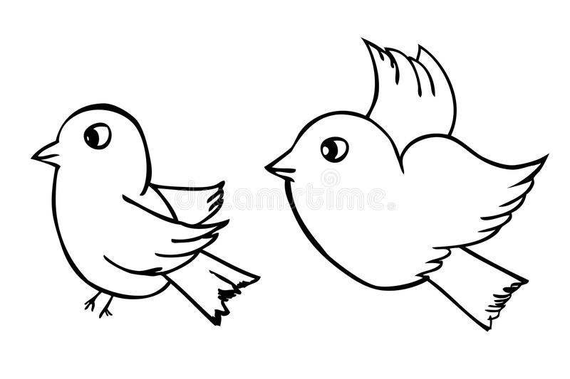 Vector Hand Draw Sketch, Two Outline Birds, Isolated On