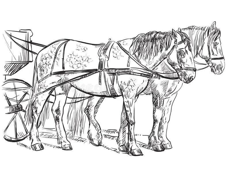 Vector harness horses stock vector. Illustration of