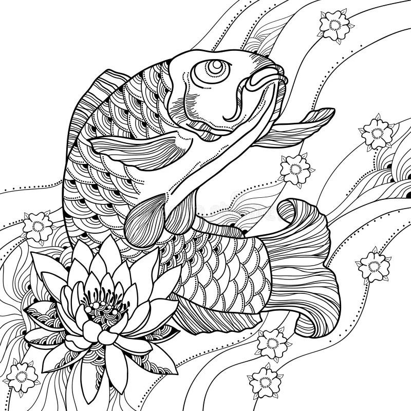 Vector Illustration With Hand Drawn Outline Koi Carp