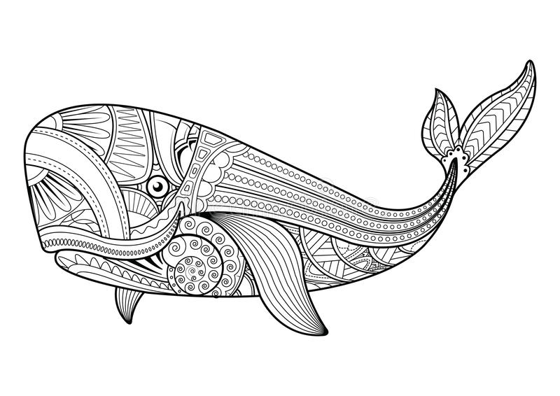 Vector Illustration Of Whale Coloring Pages Stock Vector Illustration Of Marine Coloring 87574510