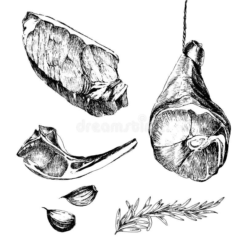 Ham Stock Illustrations