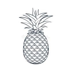 Vector Outline Pineapple Icon Stock Illustration Illustration of juicy fruit: 107832910