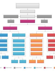 Download vertical organizational corporate flow chart vector graphic stock illustration of guide colors also rh dreamstime