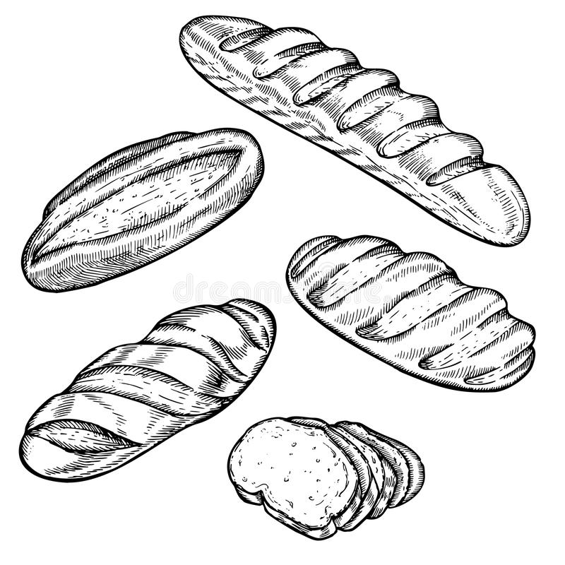 Vector Vintage Bread And Bakery Illustration Hand Drawn