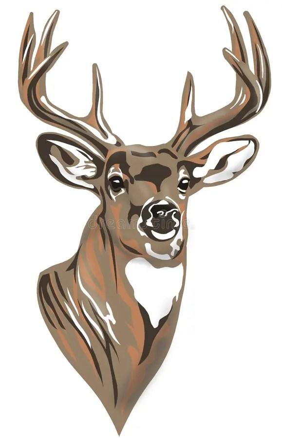 Buck Deer Clipart : clipart, Stock, Illustrations, 6,156, Illustrations,, Vectors, Clipart, Dreamstime