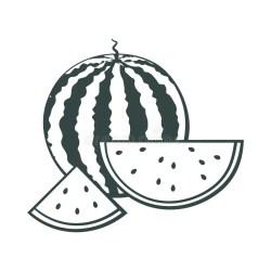 watermelon outline vector doodle watercolor drawn fruit cut whole effect sketch hand pieces