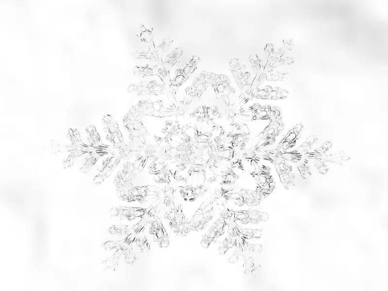 Winter Snow stock illustration. Illustration of decoration