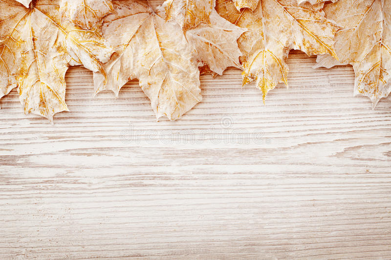 Fall Textured Wallpaper Wood Background White Leaves Autumn Wooden Grain Board