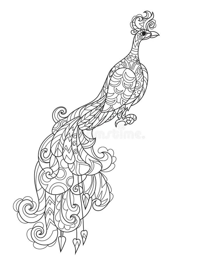 Zen Art Stylized Peacock. Hand Drawn Doodle Stock Vector
