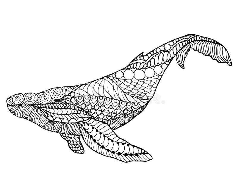 Zentangle Stylized Sea Shark And Whale Hand Drawn Vector