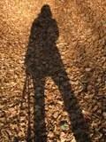 我的影子 庫存圖片. 圖片 包括有 地球. 地平線. 生氣. 沃土. 婦女. 影子. 行程. 自治權. 剪影 - 435847